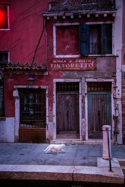 Venice postcards - Didier Cayrac - 2017 - 05