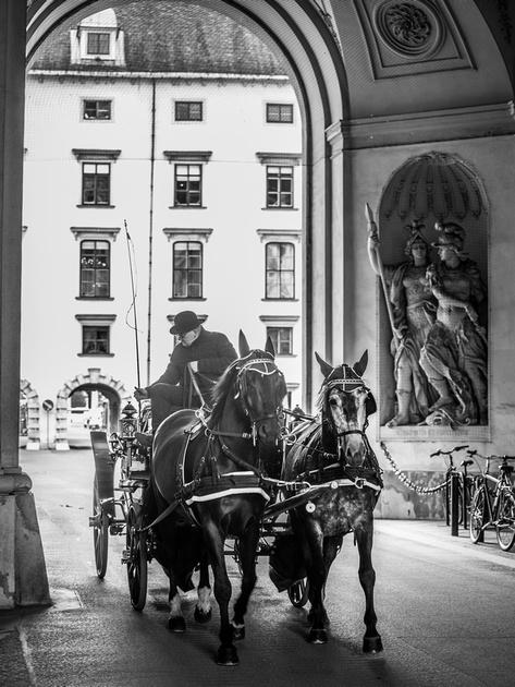 Vienna 2017 - 17