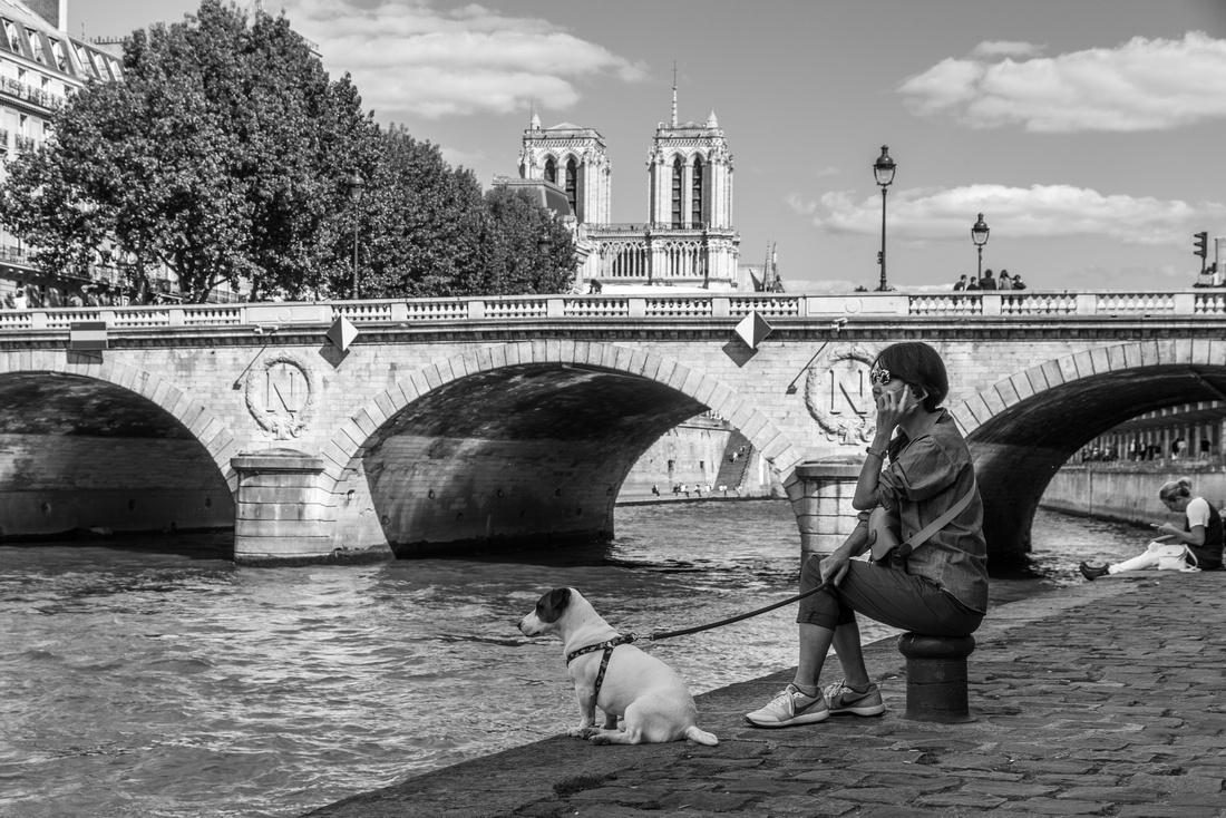 Paris - Seine river banks